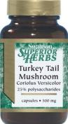 Turkey Tail Mushroom 500 mg 120 Caps