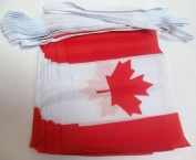 World of Flags 6m 20 flag Canada bunting