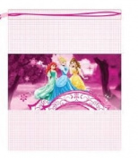 Disney Princess Mesh Drawstring Bag PE Gym Swimming Toys 33cm x 41cm