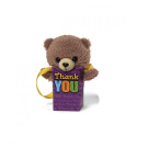 Gund G4037077 Pookie Pockets Thank You Bear