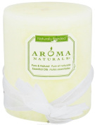 Aroma Naturals Wish Holiday Essential Oil Pillar Candle, Peppermint and Vanilla, 7.6cm x 8.9cm