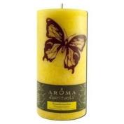 Aroma Naturals Candle Pillars Trns Btrfly 3X6 Ct
