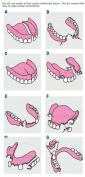 Emergency Gingiva Pink Acrylic Denture Repair & Reline Do-it-yourself Kit upto 30 + Repairs