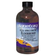Planetary Herbals Full Spectrum Elderberry, Fluid Extract 120ml