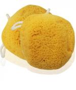 MayaBeauty Natural Foam Sea Micro Pore Bath Sponge
