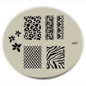 Konad Stamping Nail Art Image Plate - M57 Body Care / Beauty Care / Bodycare / BeautyCare