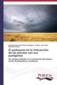 El Quitosano En La Interaccion de Las Plantas Con Sus Patogenos [Spanish]