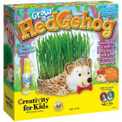 Creativity For Kids Grow A Hedgehog Kit