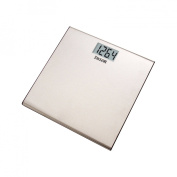 Taylor Stainless Steel Scale