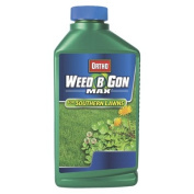 Ortho Weed B Gon Max  Southern Lawns - 32oz