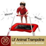 "Skywalker Red 36"" Square Lil' Animals Trampoline -36"""