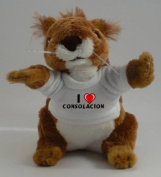 Personalised squirrel plush toy with I love Consolacion T-Shirt