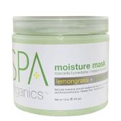 BCL Spa Lemongrass and Green Tea Moisture Masque
