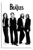 Beatles - White - Maxi Poster - 61 cm x 91.5 cm