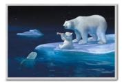 Coca Cola Polar Bears Poster Silver Framed - 96.5 x 66 cms