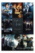 Harry Potter Collection Poster Satin Matt Laminated - 91.5 x 61cms