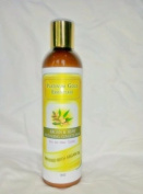 Premium Organic Conditioner By Platinum Gold Essentials, Sulphate Free, Pure Mango and Coconut, All Natural Argan and Hemp Oils, Anti-ageing Ingredients.