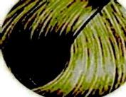 Clairol Professional Soy 4 Plex Liquicolor Permanent 12B1 Lightest Neutral Blonde 59 ml