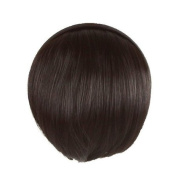 Womens False Bang Neat Fringe Hairpiece Clip in Hair Extensions