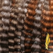 Condition Culture Featherlocks Braiders Natural Mixed