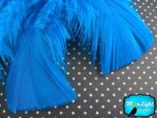 Turkey Feathers, Turkey Plumage - Turquoise Blue Turkey T-base Wholesale Body Plumage Feathers (Bulk) - 1/4th Pound