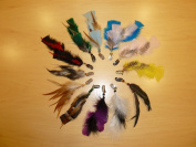 100 Clip-in Feather Hair Extensions Various Colours, No Pliers or Hooks Needed, No Kits, Not Just Feathers Only, Easy Clip in Hair Extensions!