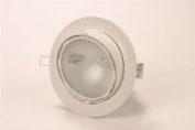 Commercial Tilt Downlight 70w Complete with Glass