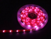 12v LED Flexible PINK SMD Strip Light 5 metres / 300 LED's + 12 Power Supply ** IDEAL FOR GARDEN, HOMES, AQUARIUM, KITCHEN, ETC **