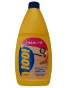 1001 Carpet Shampoo 450ml