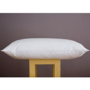 MICROFIBRE PILLOWS/ SOFT FINE ULTRA SOFT MICROFIBRE COVER WITH SPIRAL BOUNCE FILLING : NON ALLERGENIC - 2 PILLOW PACK FULL SIZE : MEDIUM SUPPORT RATING