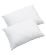 Anti-Allergy Hollowfibre Pillows, Pack of 2, White