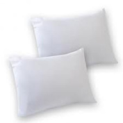 NON ALLERGENIC HOLLOWFIBRE PAIR OF PILLOWS : SOFT SUPPORT WITH PAIR OF FREE PILLOW PROTECTORS