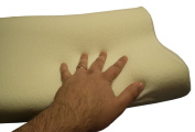 Memory Foam Pillow w/ Free Soft Terry Cloth Zippered Cushions Pillows Cover NEW