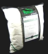 Hungarian White Goose Down & Feather (90% WGD 10% WGF) Continental Square Pillow with Free Pillowcase