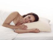 Comfort Memory Foam Pillow with Silver