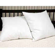 """Luxury Soft Touch Square Pillow Pair (2 pillows per pack)- Euro/Continental Size 65x65 cms (26x26"""")- Anti Allergenic 233 Thread Count Cover With a Piped edge"""