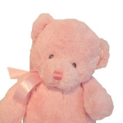 Gund 38cm My First Teddy for Newborn and Above