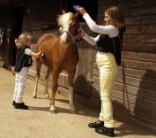Rhinegold Childrens Horse Riding Jodhpurs