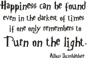 Harry Potter happiness vinyl wall quote sticker.Albus Dumbledore. Any colour. 90cm x 45cm