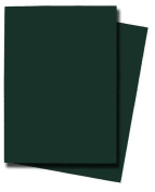 Max Protection Flat Standard Gaming Card Sleeves, Flat Emerald Green, 50 Count