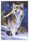 500 Wolf On Guard    05/12
