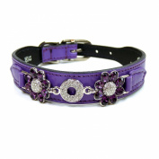 Hartman and Rose Crystal Daisy Collection Collars Harnesses/ Leads, Sizes 12 - 36cm , Grape