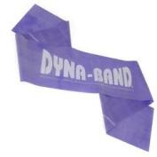 Dyna Band - Purple - workout resistance band