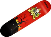 Koston Skateboard Deck Destroyer 20cm x 80cm - KOSTON Skateboards
