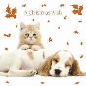 Christmas Cuddles Ginger Kitten & Cocker Spaniel Luxury Christmas Cards Pack