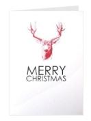 Tartan & Zebra Greeting Card 'Christmas Deer'