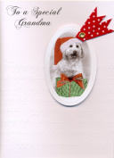 To A Special Grandma - Christmas Greeting Card