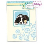 A Little Bird To Me - Border Collie Birthday Magnet Card