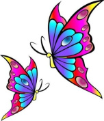 Multicolour Butterfly Car Bike Van Camper Sticker decal