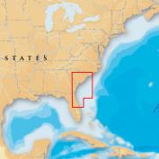 Navionics Platinum+ Multi-Dimensional Electronic Marine Charts on SD for Chartplotter - S Carolina-N Florida